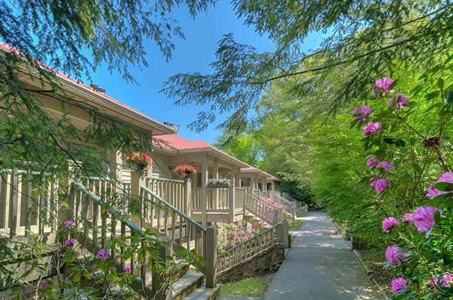 Chestnut Lodge in Mountain Lake Lodge